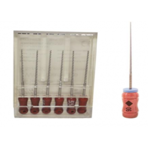 3-D Dental Endodontics - Files Flex Type